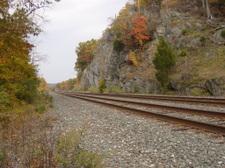 Cove_trail_tracks