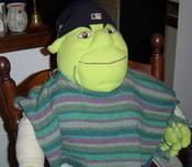 Shrek_in_poncho_1